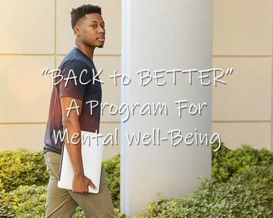 "The ""Back to Better"" Project"